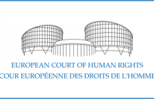 Family and Demography Foundation defends Russian ban on homosexual propaganda among children before European Court of Human Rights